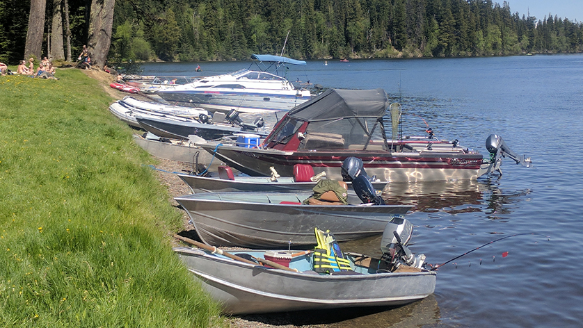 Boats lined up along the shoreline at Purden Lake Provincial Park - EDI Charity Fishing Derby