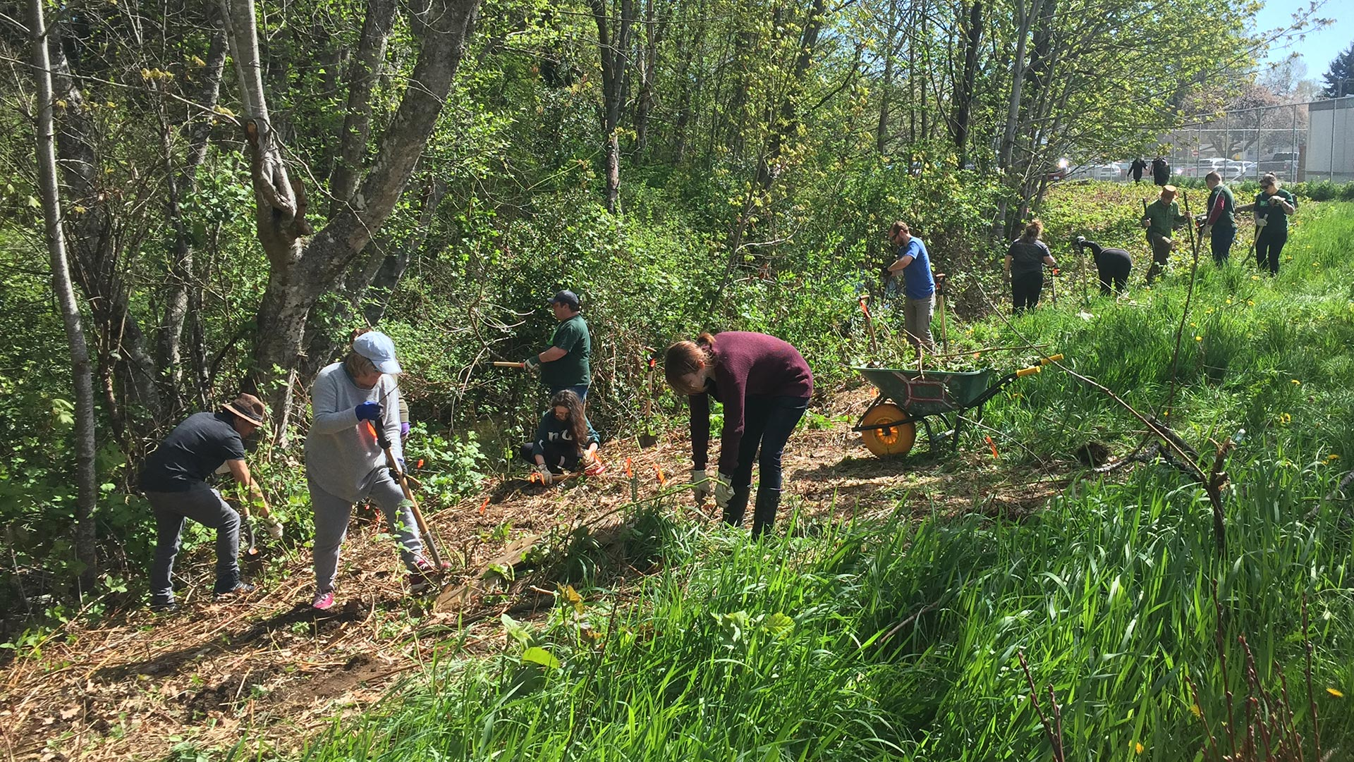 Volunteers working at restoration efforts - Georgia Greenway