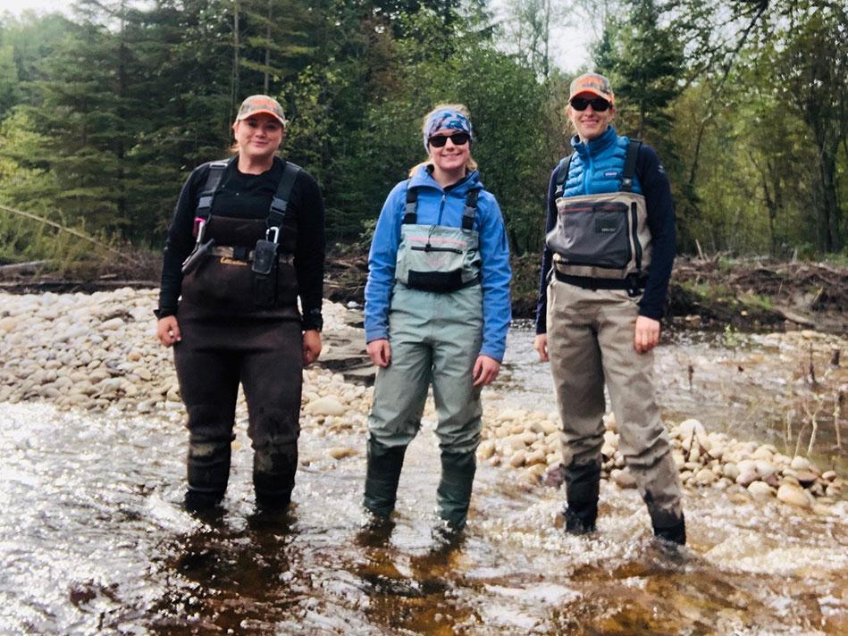 edi grand prairie - team at the stream